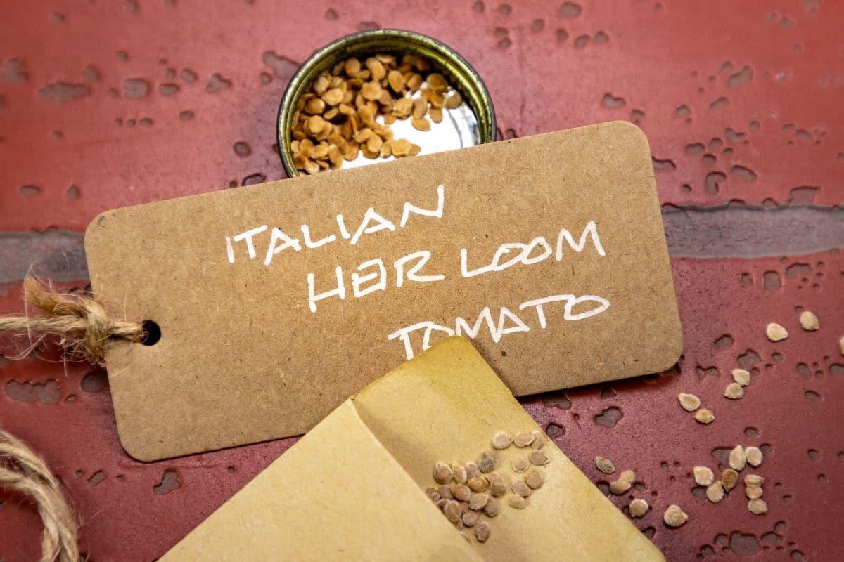 heirloom seeds in a brown envelop