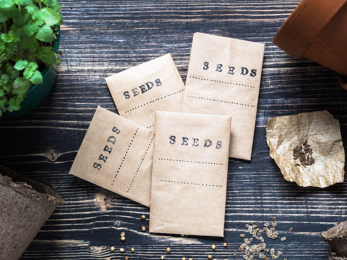 seeds sachet
