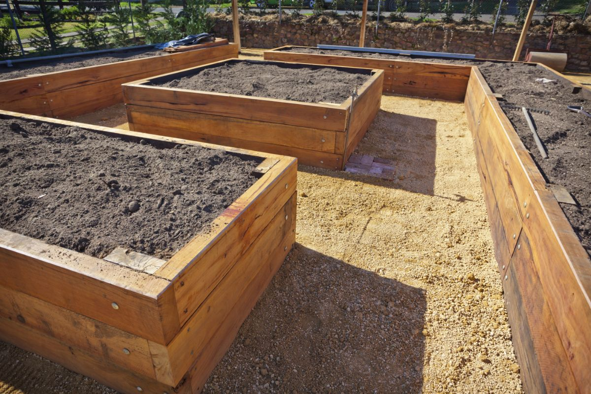 raised bed for planting