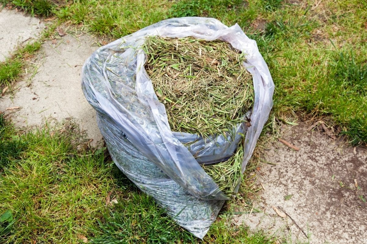 sack of grass clipping