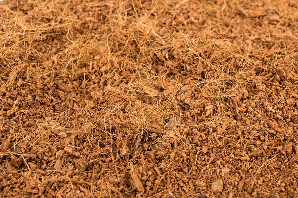 coco coir fertilizer