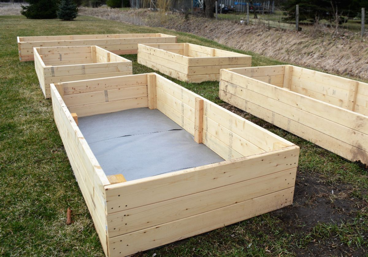 constructed empty raised bed