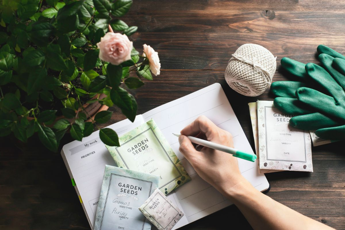writing in a notebook with seed sachets and plants