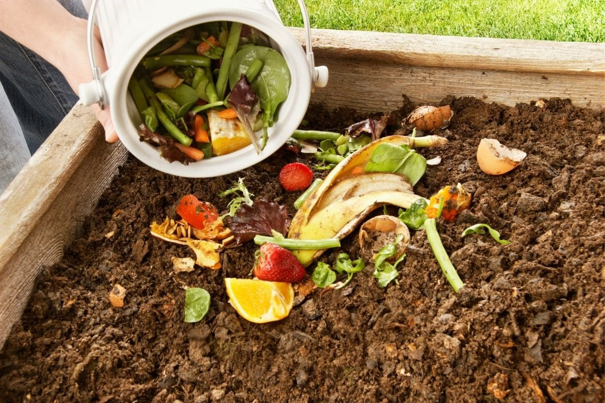 putting compost in the garden soil