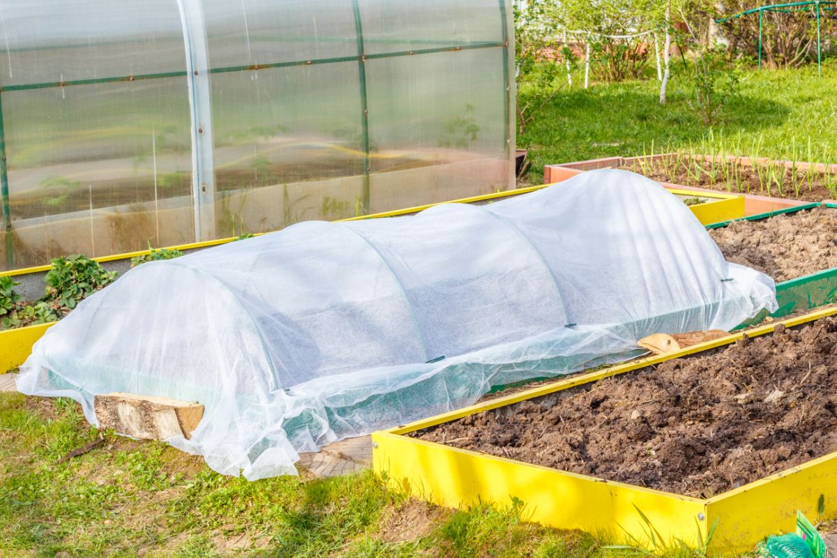 small vegetable greenhouse covered in plastic for preheating