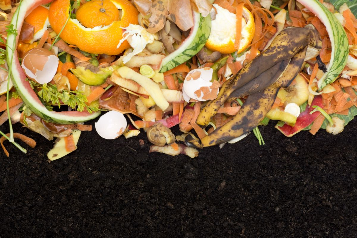 compost with soil