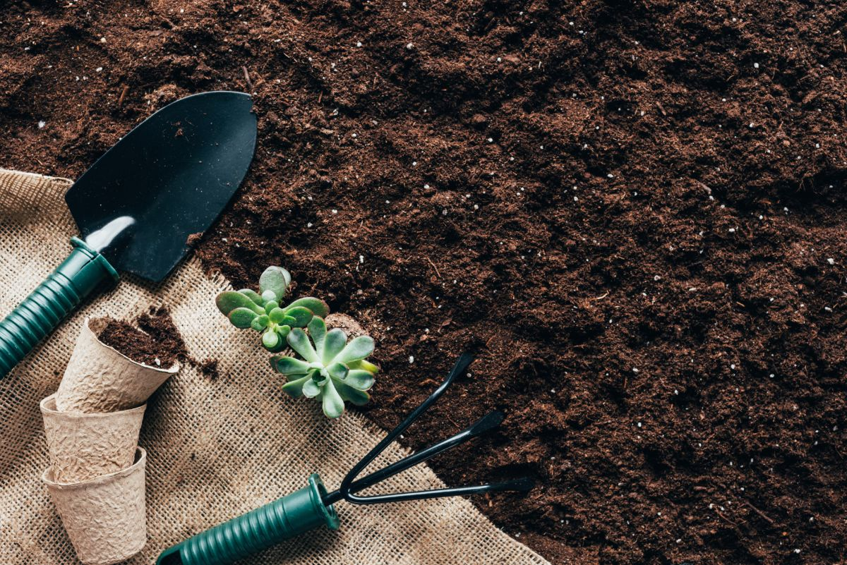 gardening tools, flower pots and green plants on sackcloth on soil
