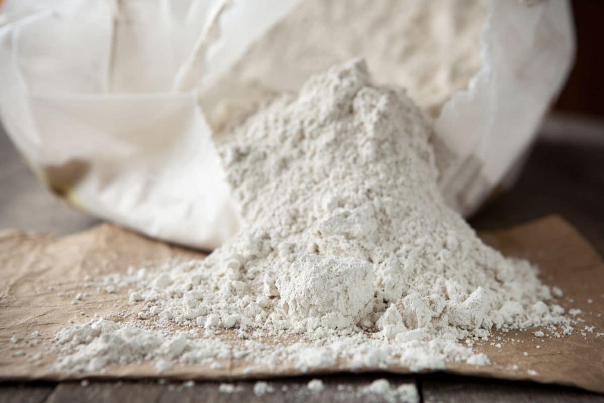 Diatomaceious earth powder