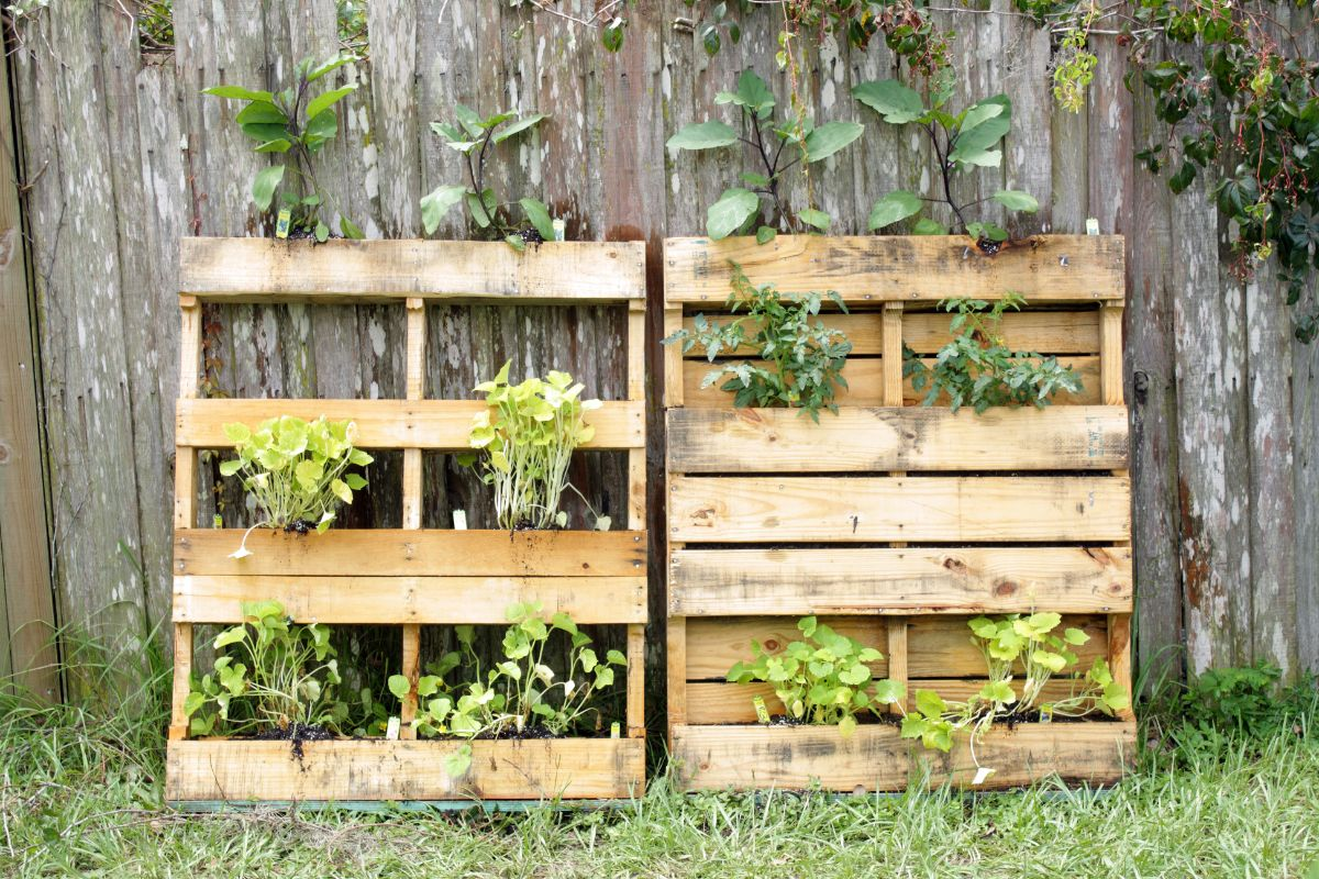 a pallet garden filled with plants