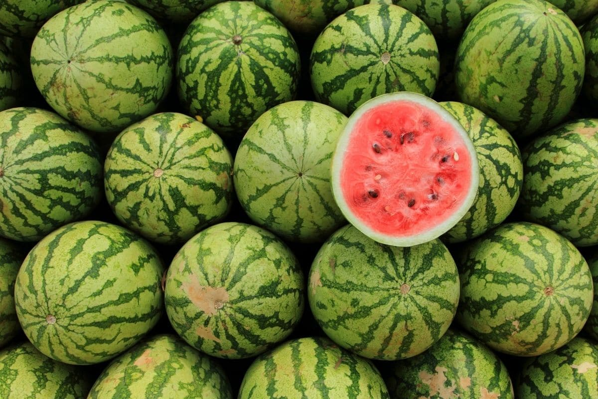 watermelon in the market with sliced display