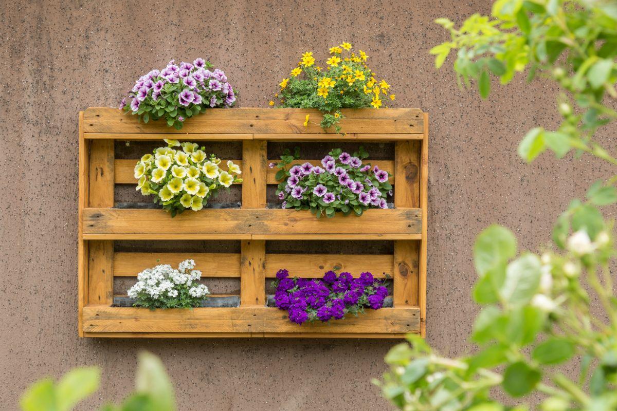 flower pallet garden
