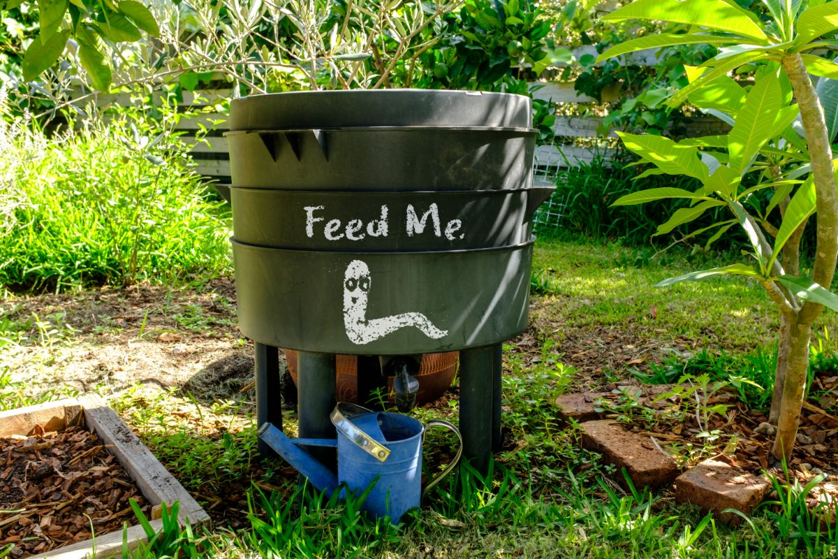 """worm bin with a """"feed me"""" sign in the backyard"""