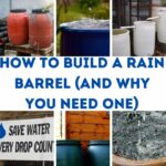 How to Build a Rain Barrel and why you need one