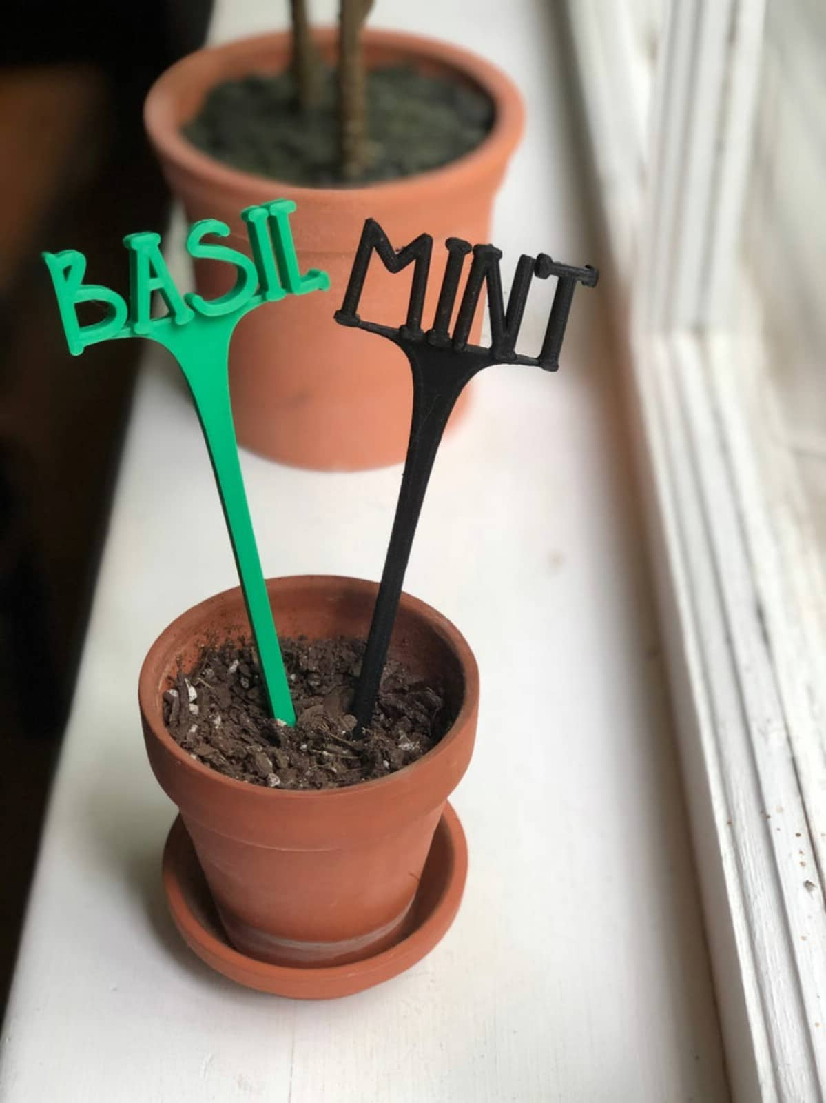Basil and mint labels in small terra cotta pot