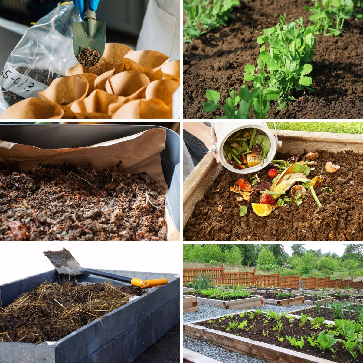 Photos featuring tasks to do to amend the garden bed soil.