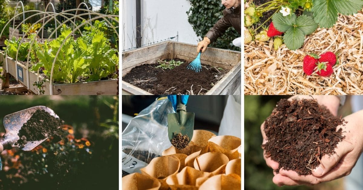 15 Tips for Amending a Garden Bed Prior to Planting