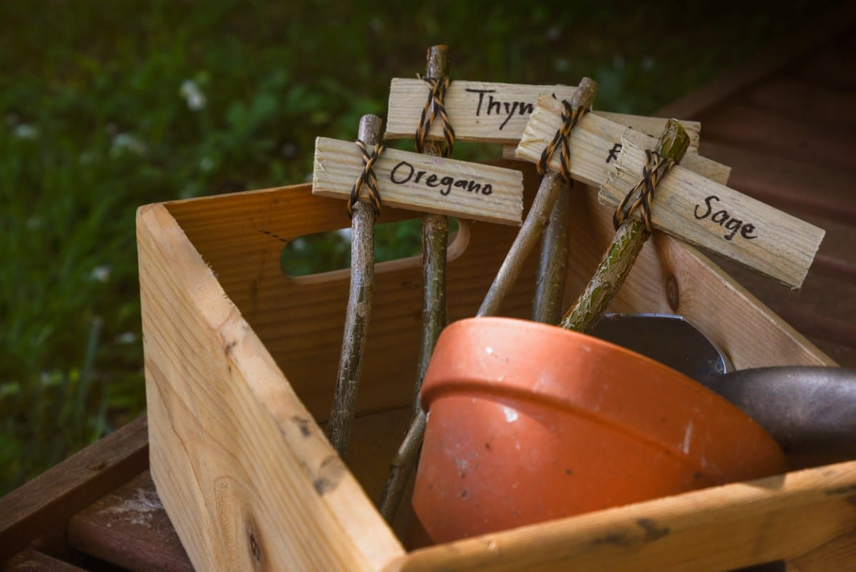 Plant markers in wood box with terra cotta planter