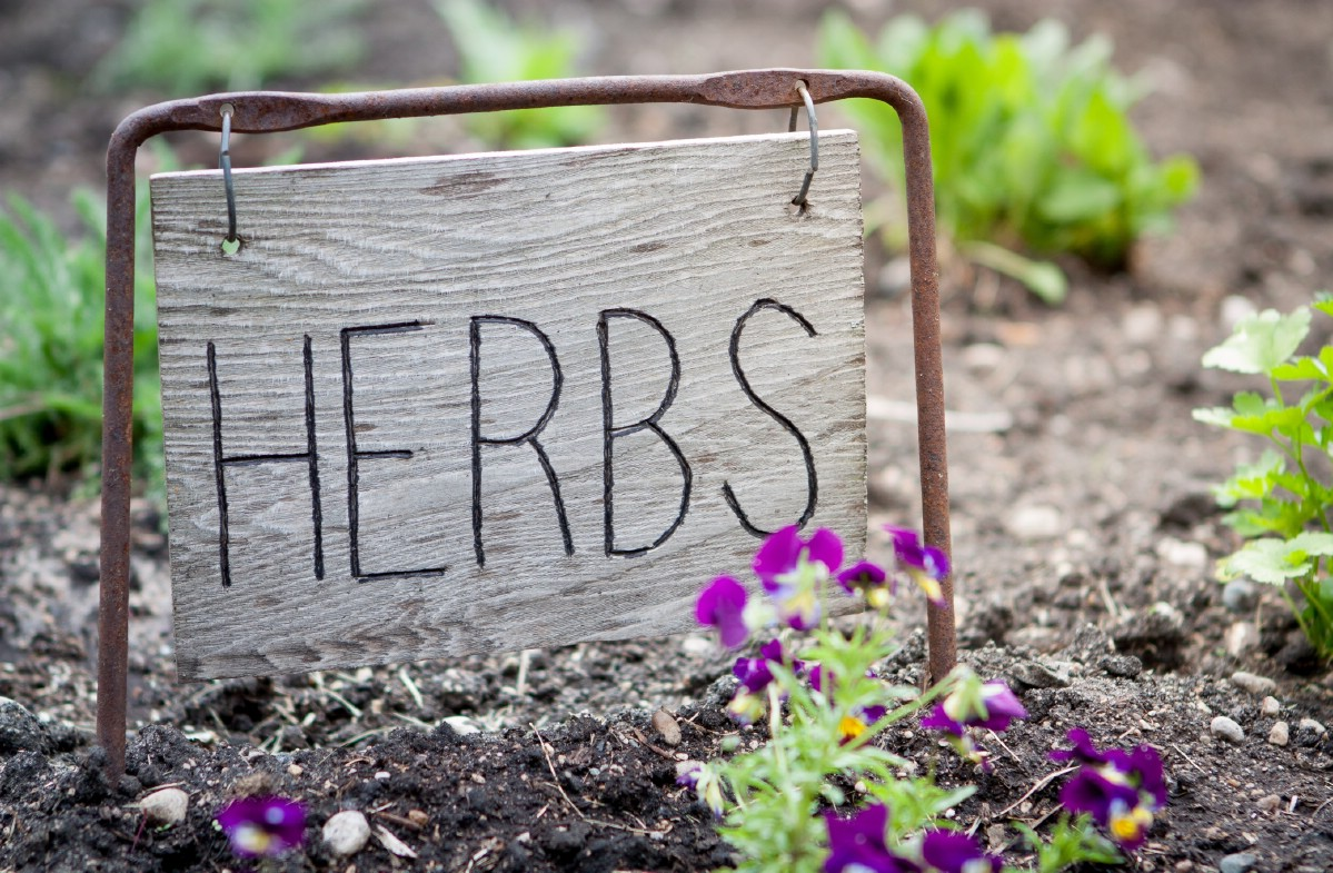 Wooden herb sign