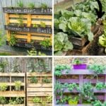 How to Make and Grow in a Pallet Garden