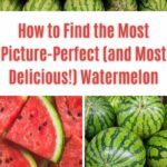 How to Find the Most Picture-Perfect Watermelon