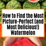 How to Find the Most and Most Delicious Watermelon