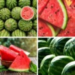 How to Find the Most Picture-Perfect (and Most Delicious!) Watermelon