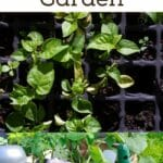 Tips for Planning a Survival Garden