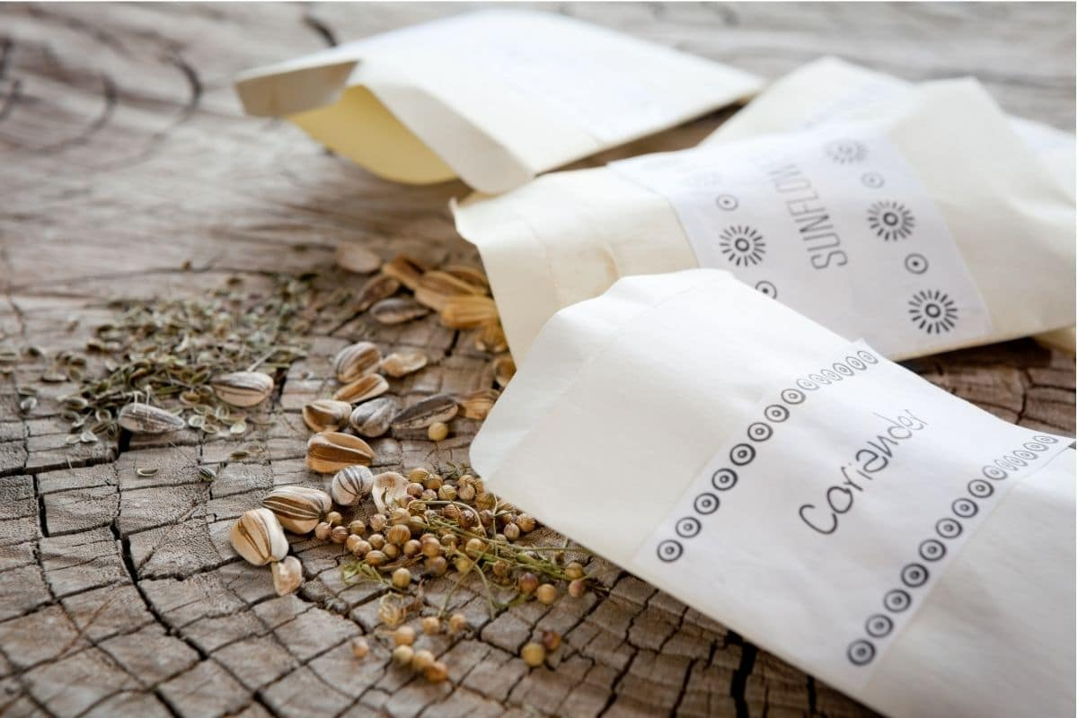 spilled seeds from see packets in a wooden table