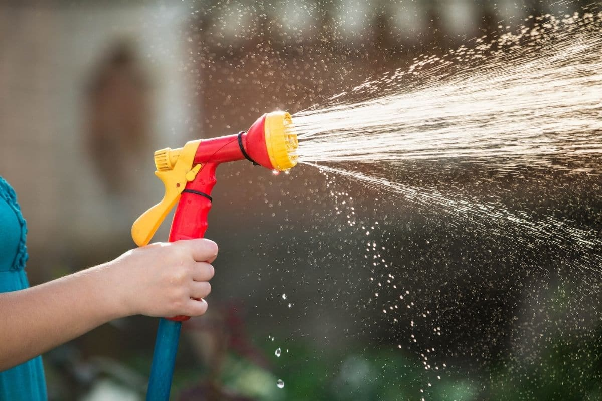 spraying water with a hose in the garden