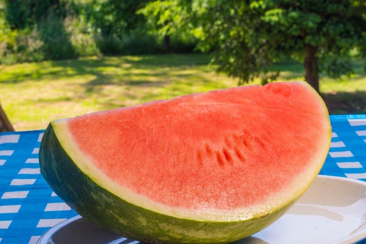 Triple crown watermelon variety, a seedless watermelon
