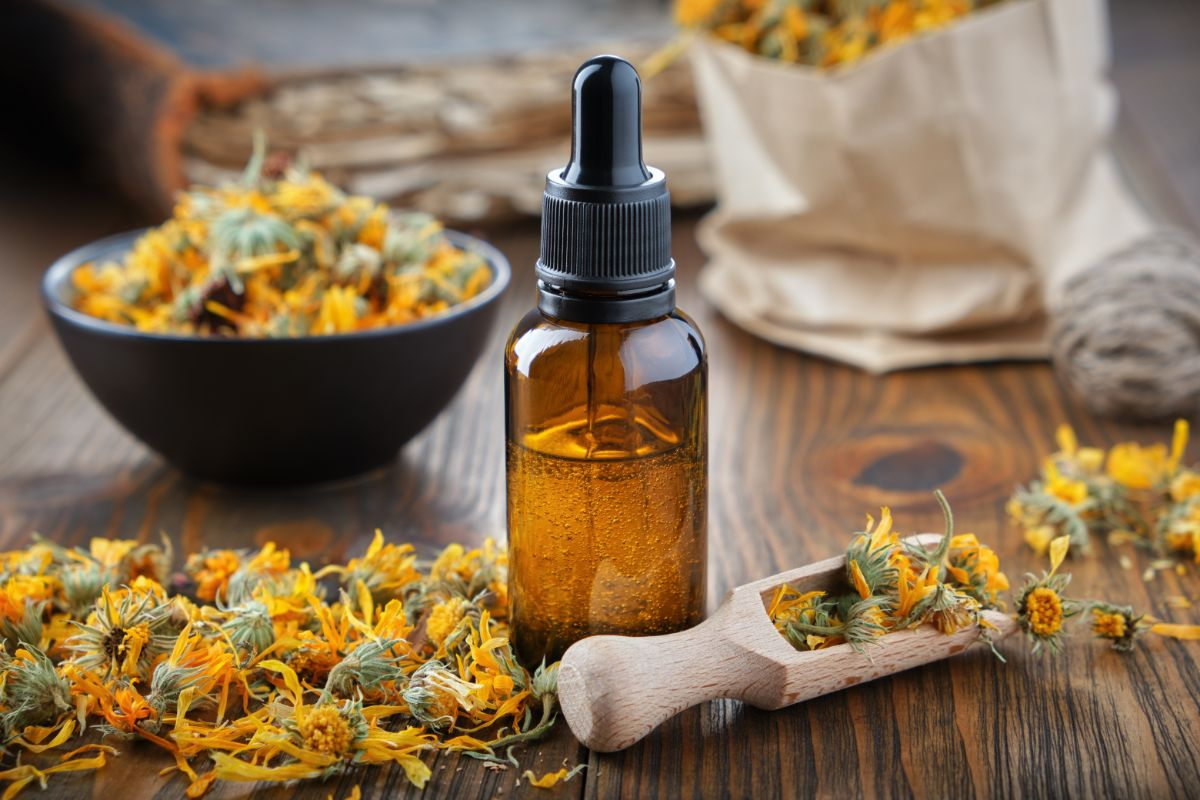 extracted essential oil from marigold flowers