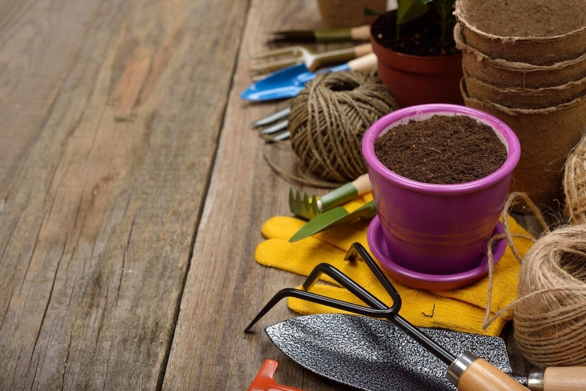 gardening tools and supplies in the garden