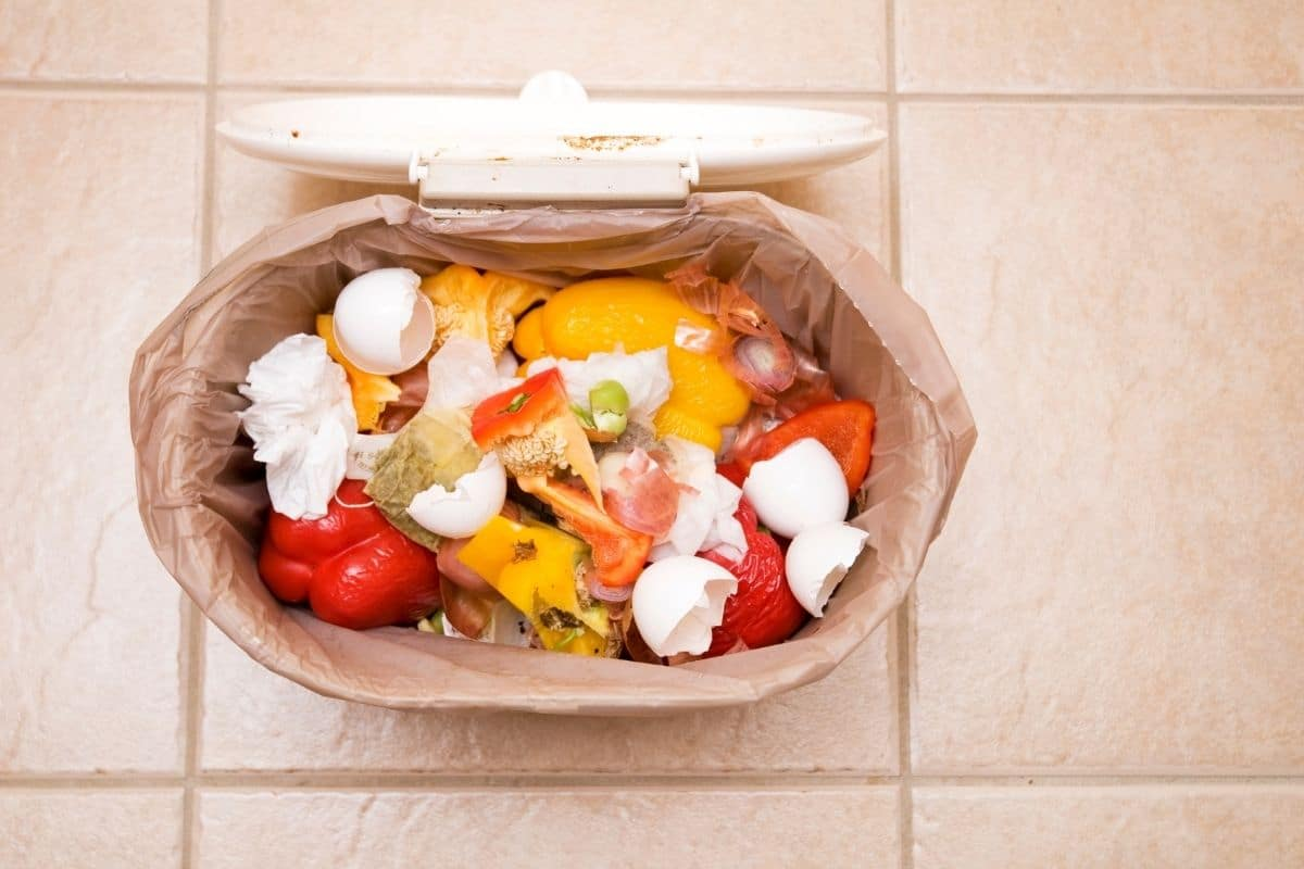 compost bin inside the house