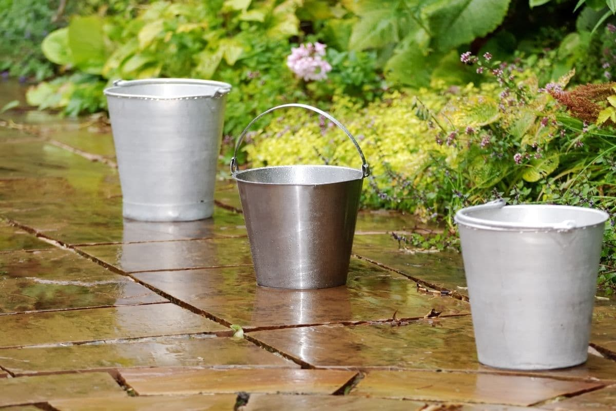 lined up buckets after a rainfall in the garden hallway