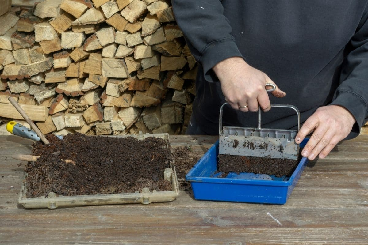 making soil blocks to plants seeds indoors, using a soil block maker and blocking soil and placing it in a blue tray