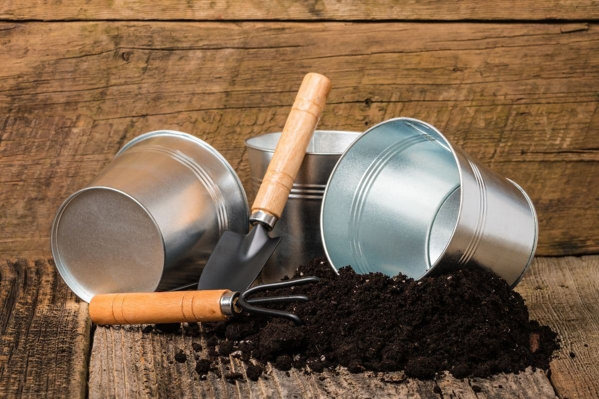 spilled potting soil in the wooden table and small bucket and gardening tools