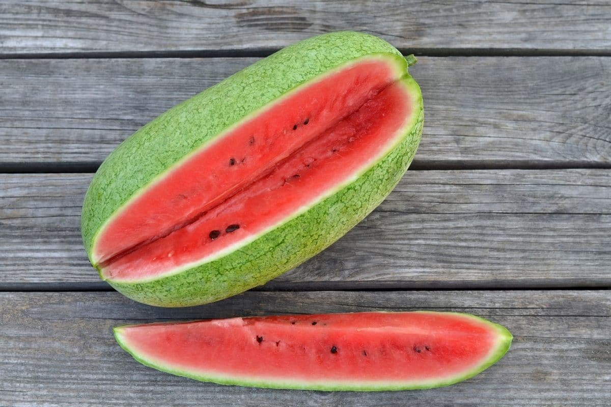 a classic watermelon with long and oblong size with light green on the outside with faded stripes in the table