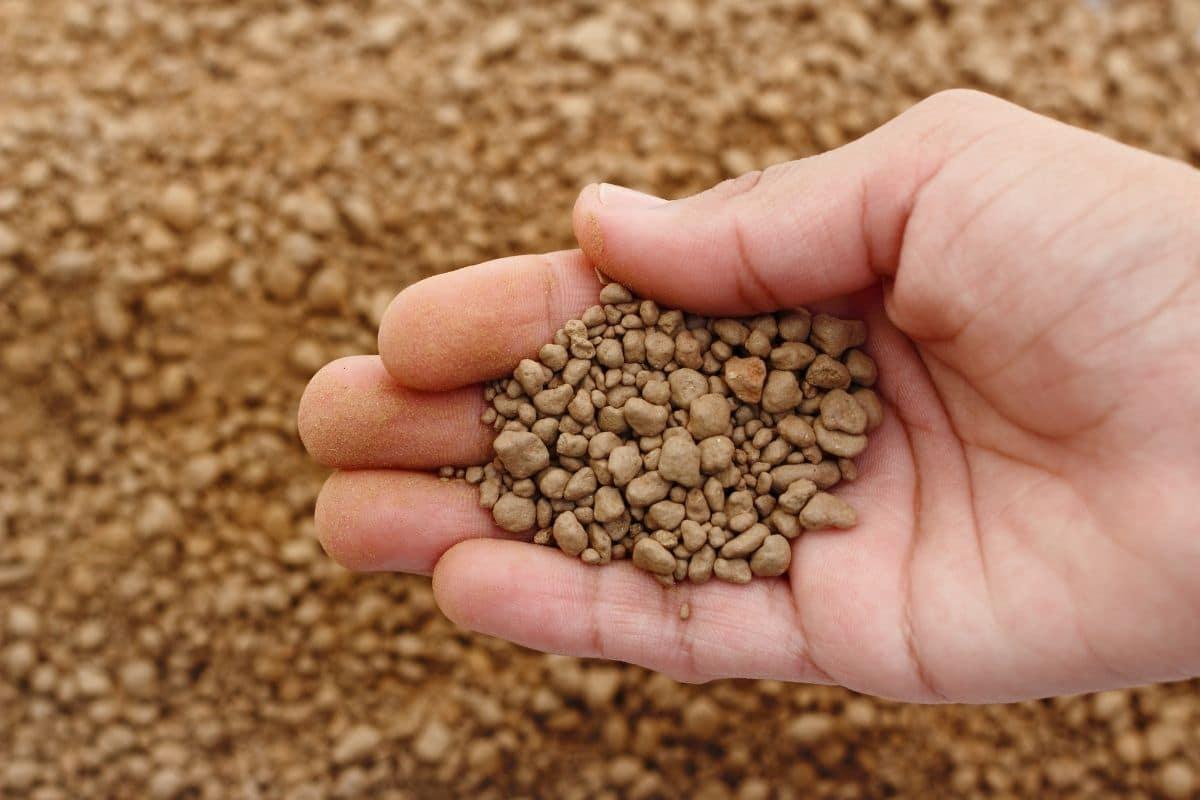fertilizer in hands