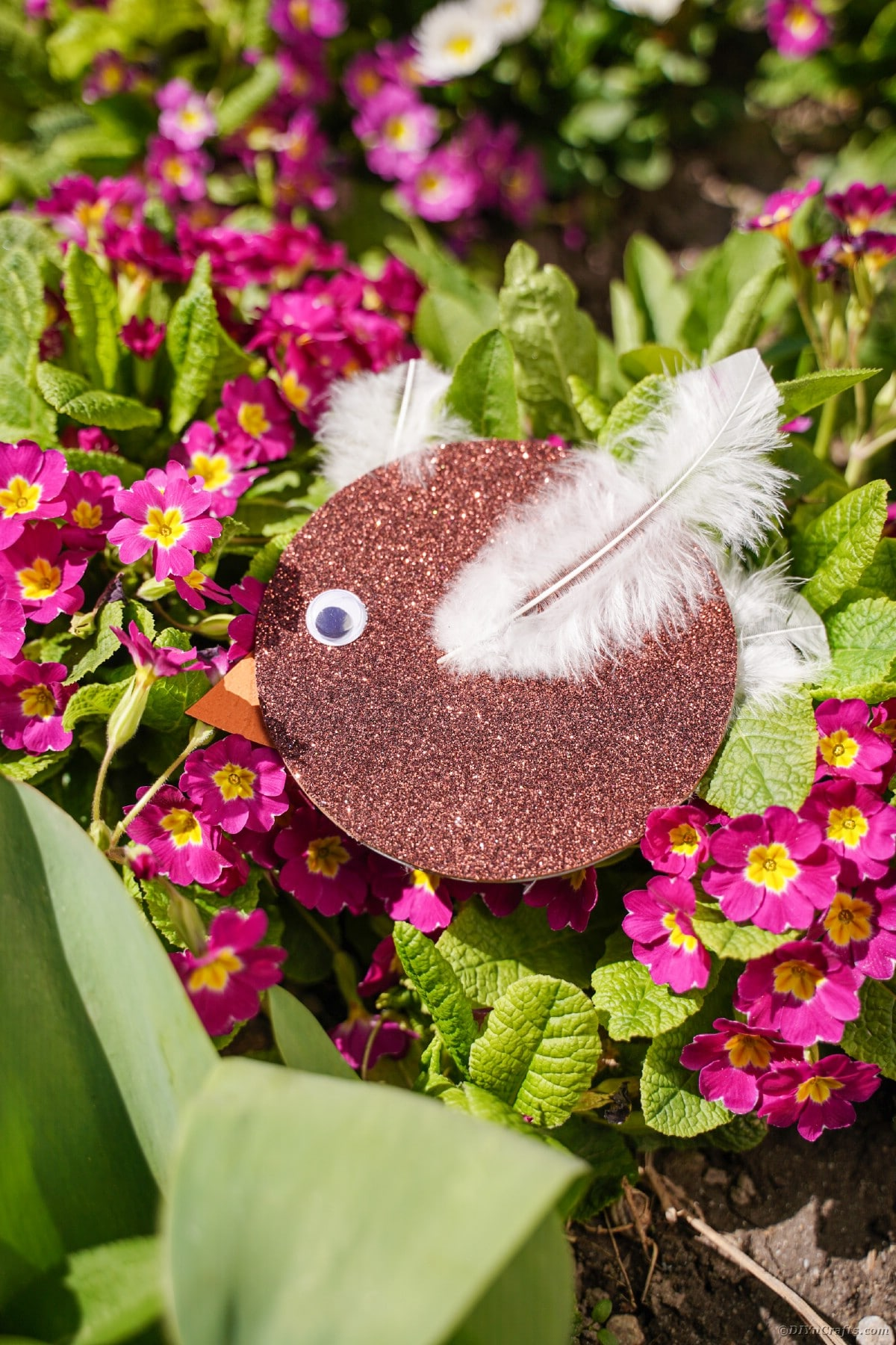 Brown CD bird on bush with pink flowers