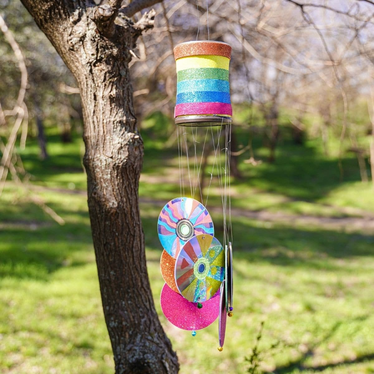 Rainbow wind chime in tree