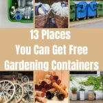 Places You Can Get Free Gardening Containers