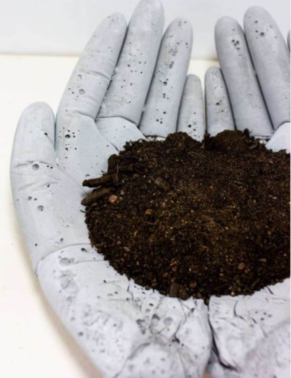 hand planter with soil for planting