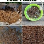 How Rusty Nails Can Help Your Plants