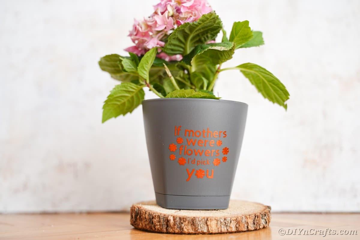 Gray flower pot with orange message