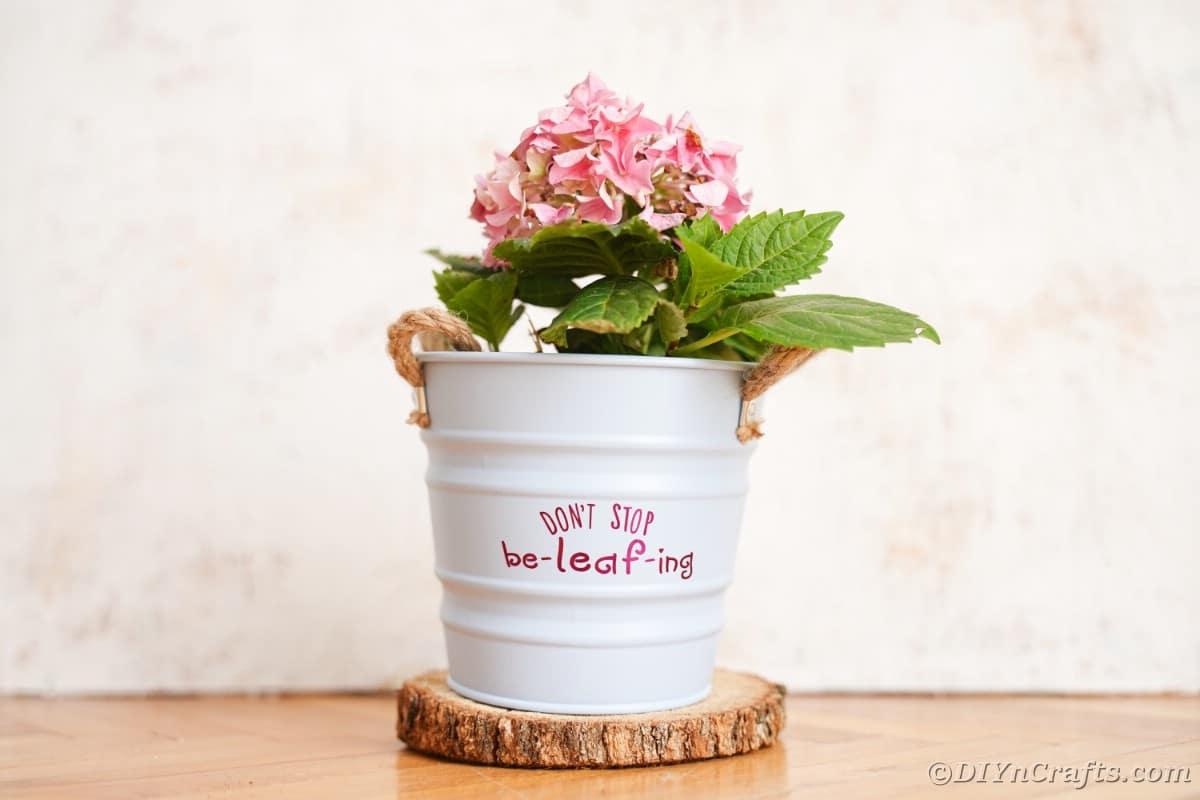 White flower pot against white wall on wood slice