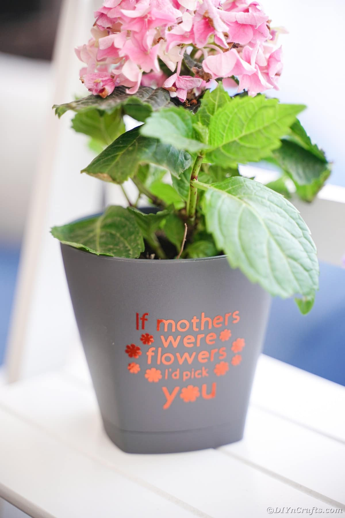 Gray flower pot on white shelf