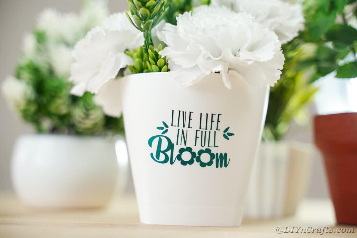 Inspirational flower pot on table