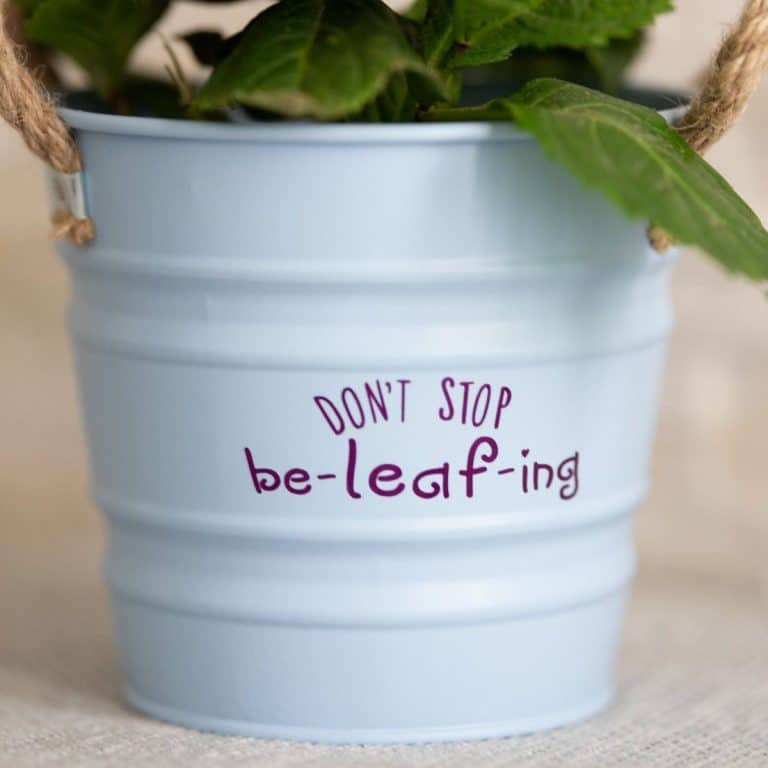 White flower pot with purple message that says don't stop be leaf ing