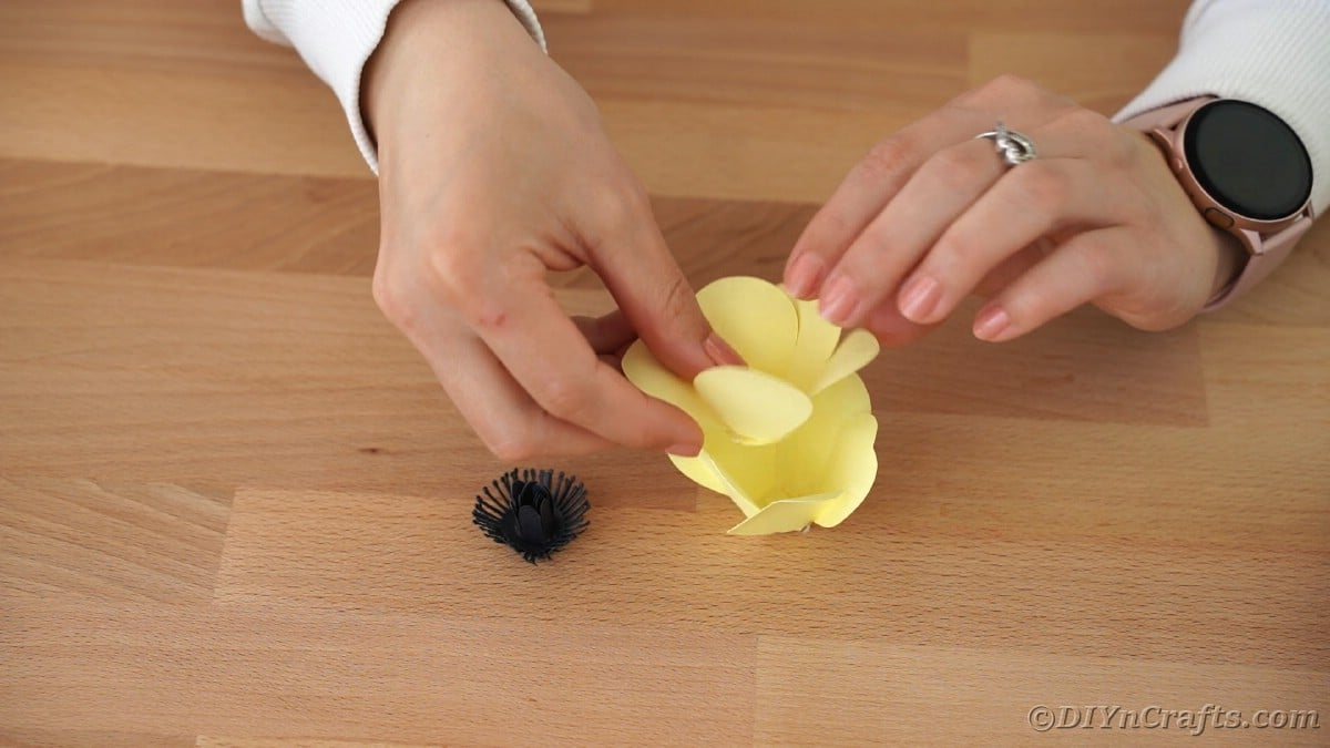 Gluing yellow flower petals together