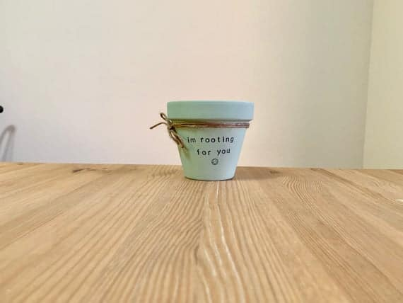 I'm Rooting For You Flower Pot Cute Flower Pot Funny | Etsy